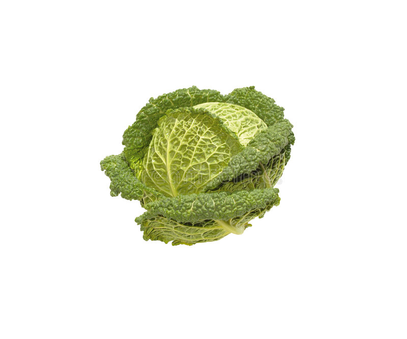 Download Savoy cabbage stock image. Image of mulligan, season, white - 9229415