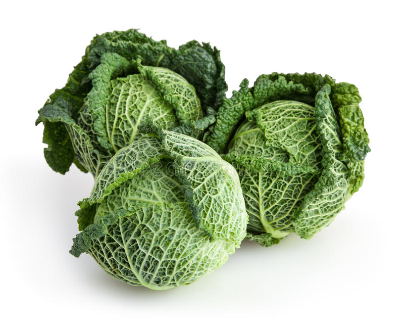 Savoy cabbages isolated on white background stock photography