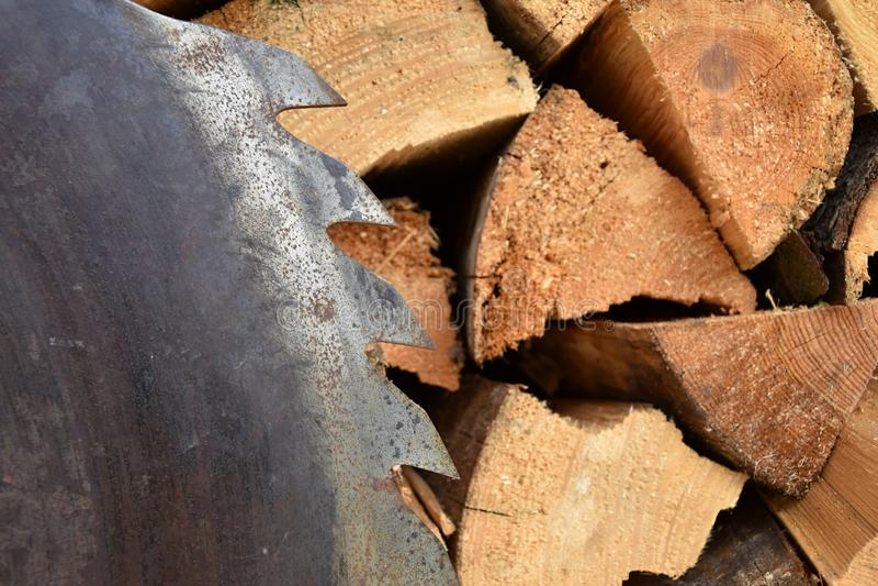 Download Saw Circular Saw Blade At Wood. Stock Photo - Image of round, work: 107807752