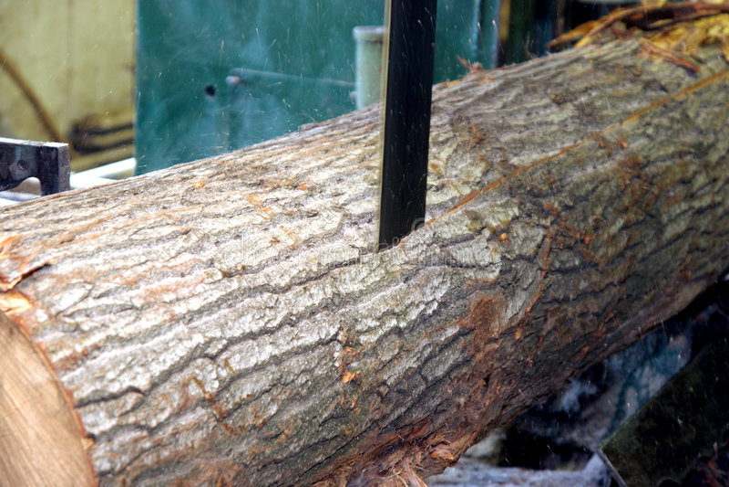 Saw cutting wood stock image