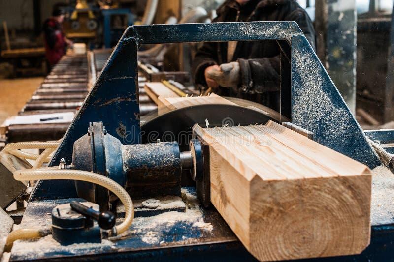 saw för bladcircularclose som skjutas upp Snickare Using Circular Saw för trä royaltyfri bild