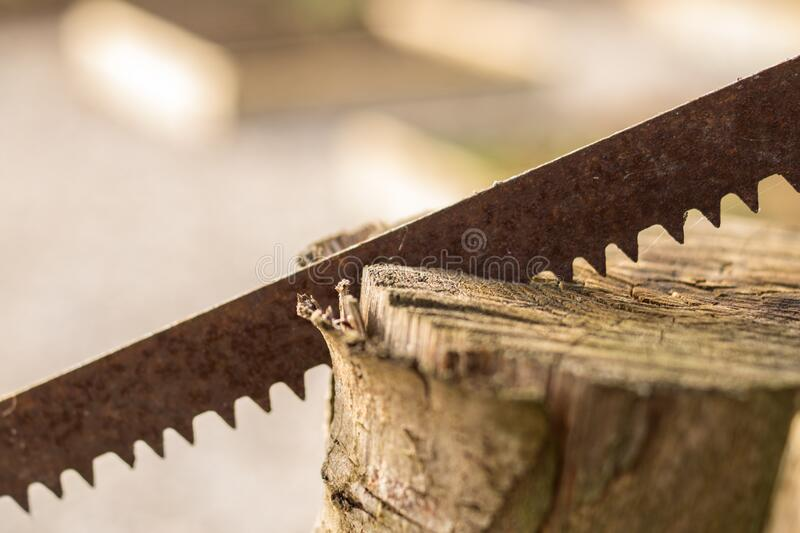 Saw in wood stock photos