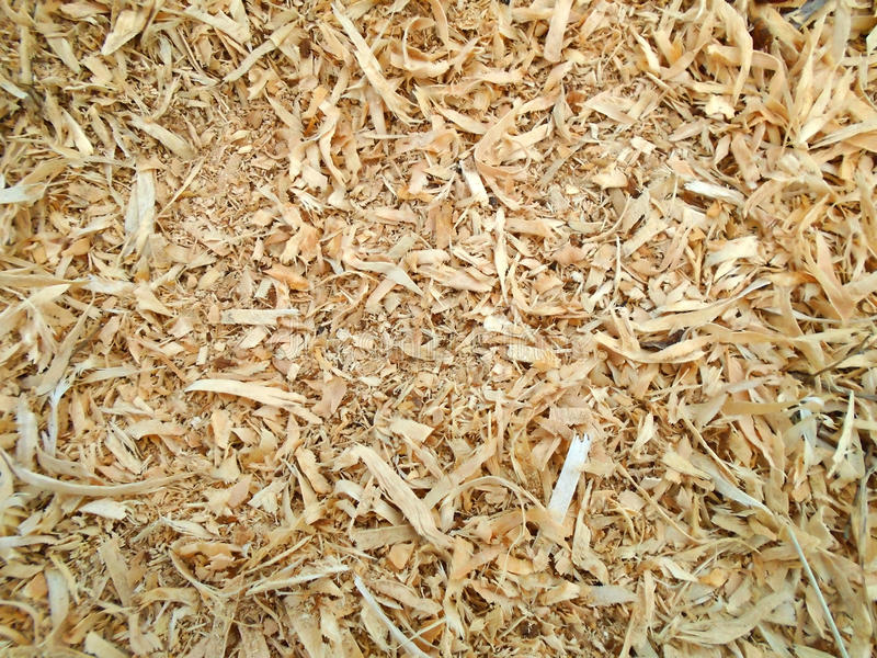 Sawdust and mulch bark background royalty free stock image