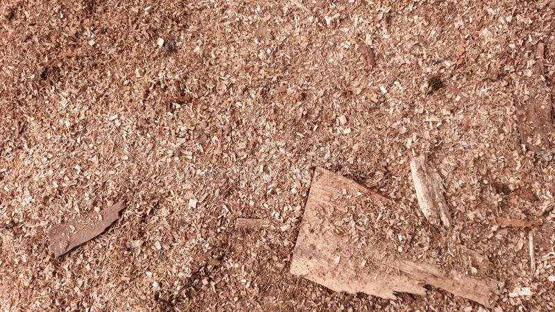 Sawdust texture stock photos