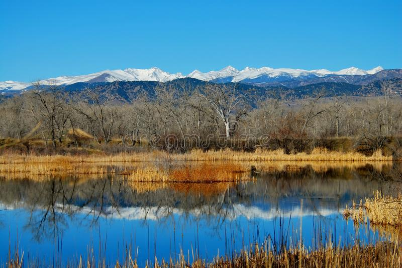 Sawhill Pond winter reflection royalty free stock photo