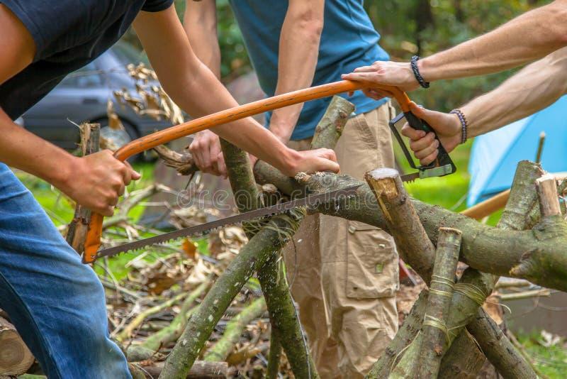 Sawing da lenha em um acampamento foto de stock royalty free