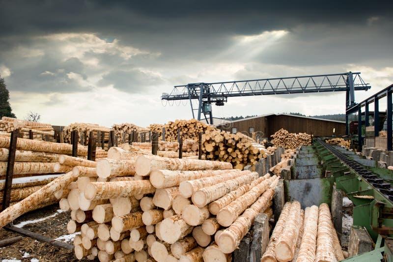 Sawmill stock photos