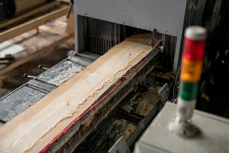 At sawmill. Image of sawing wood with laser marks royalty free stock photo