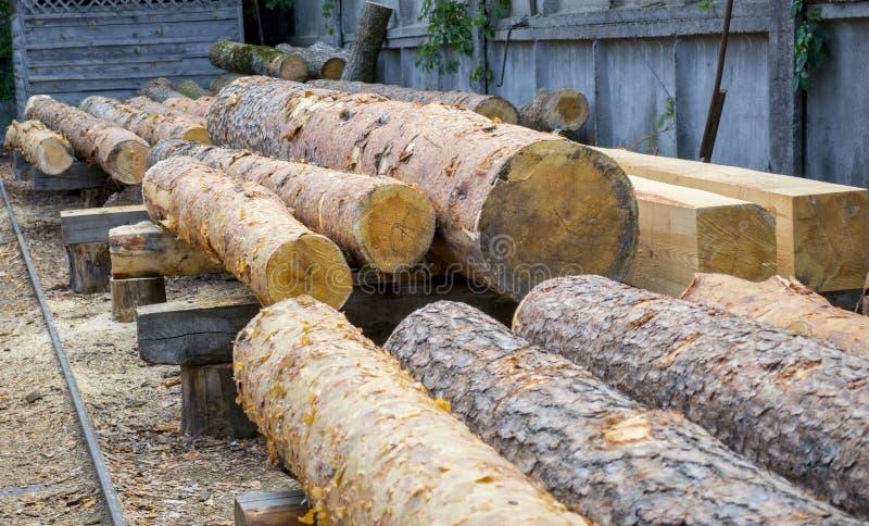 sawmill A pilha da madeira do armazém de logs do pinho para ver irradia a madeira serrada das placas foto de stock royalty free