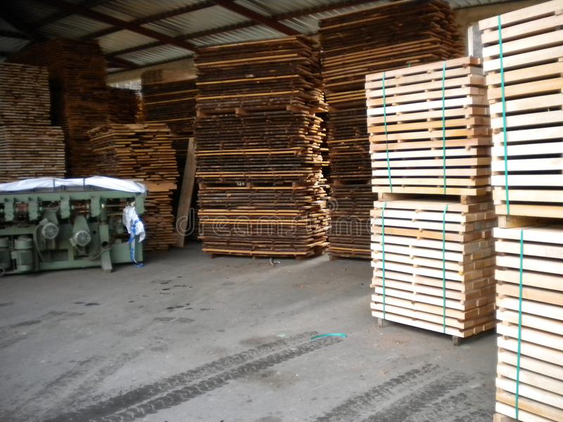 Wooden beech boards. Sawmill in Serbia with huge stock beech boards.Peaceful environment for success.Place for hard work. Work place for real enthusiastic royalty free stock images