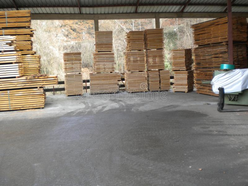 Wooden beech boards. Sawmill in Serbia with huge stock beech boards.Peaceful environment for success.Place for hard work. Work place for real enthusiastic royalty free stock image