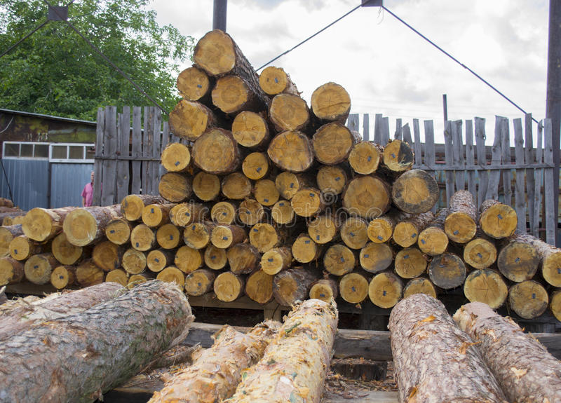 Sawmill. Warehouse timber stack of Logs of pine for sawing beams boards lumber royalty free stock images