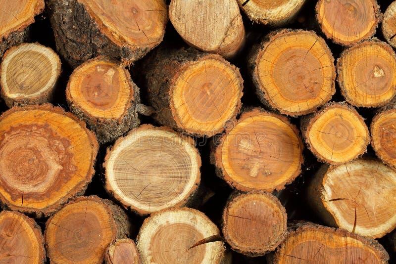 Sawn dobrou logs imagem de stock