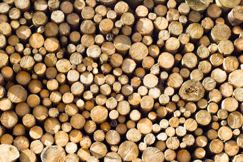 Stack of firewood. Sawn and stacked pieces of firewood royalty free stock images