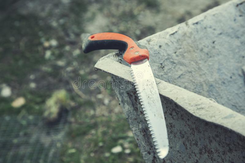 Saws on nature stock photo
