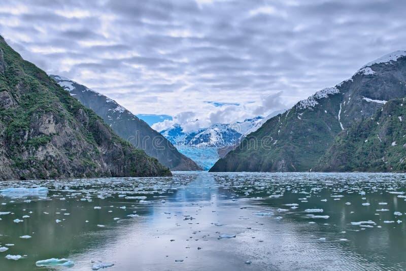 Sawyer Glacier fotografering för bildbyråer