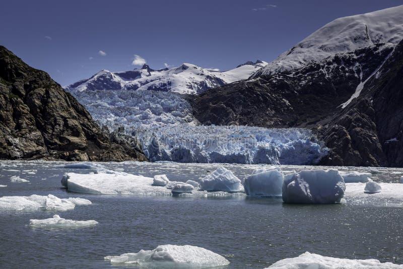 Sawyer Glacier arkivfoton