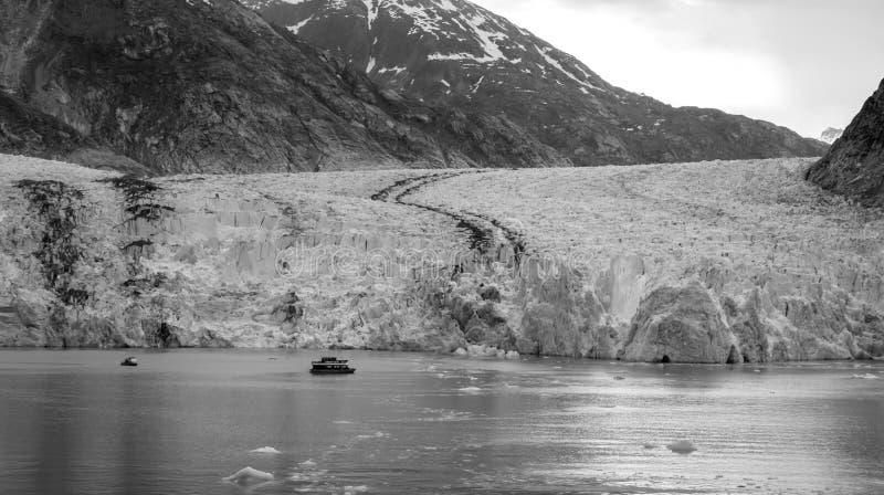 Sawyer Glacier på Tracy Arm Fjord i den alaska stekpannehandtaget arkivbild