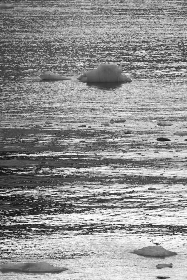 Sawyer Glacier på Tracy Arm Fjord i den alaska stekpannehandtaget arkivfoto