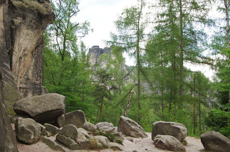 Saxon Suisse photo stock