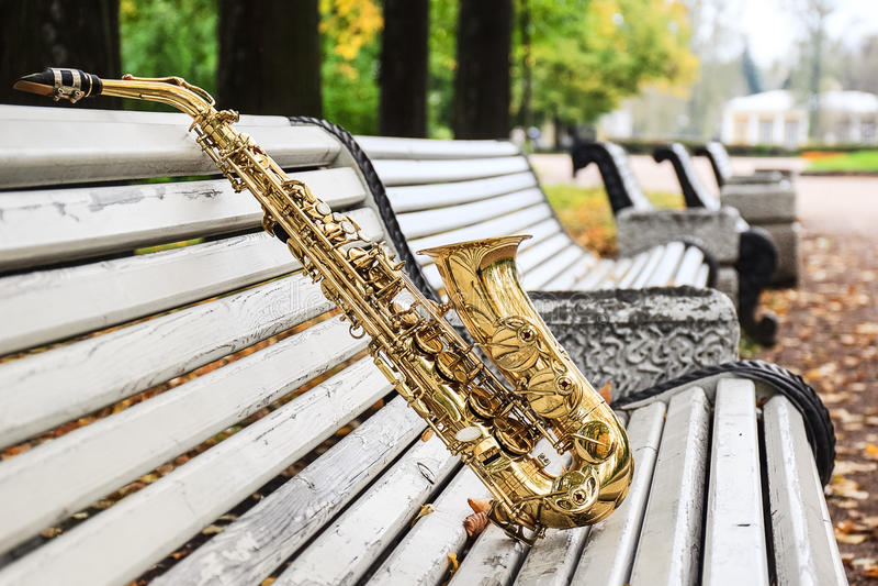 Saxophone Alto στο πάρκο φθινοπώρου στοκ εικόνα με δικαίωμα ελεύθερης χρήσης