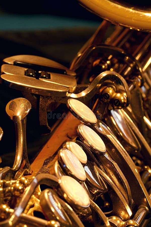 Saxy Closeup stock photography