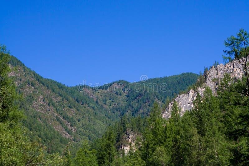 Sayan Mountains royalty free stock photography