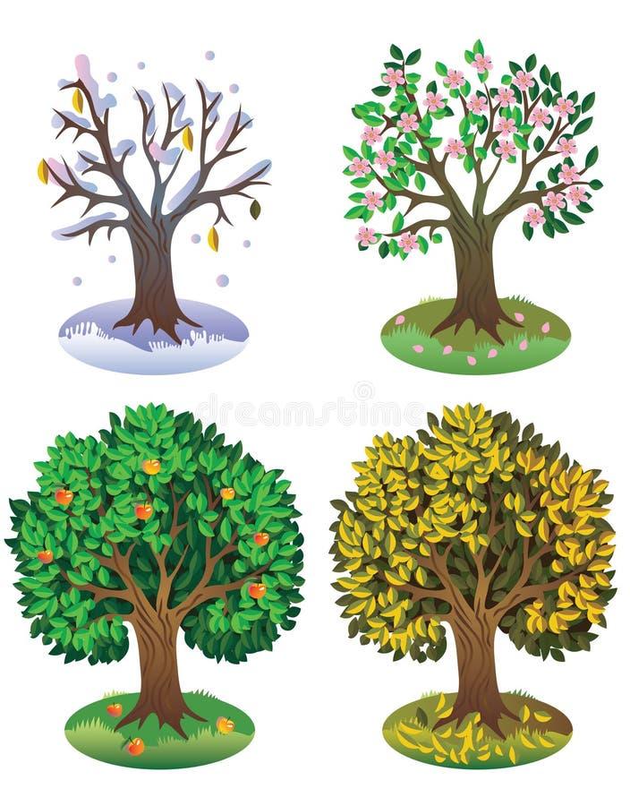 Download Sazona el árbol ilustración del vector. Ilustración de hojas - 7150201