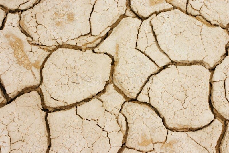 Terra asciutta immagine stock