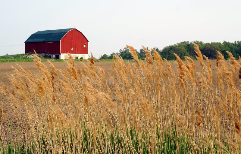 Sbarco dell'azienda agricola fotografia stock