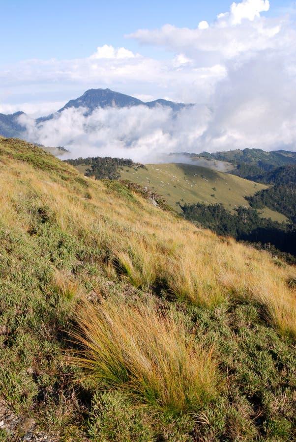 Sbarco dell'erba e della montagna. fotografie stock libere da diritti