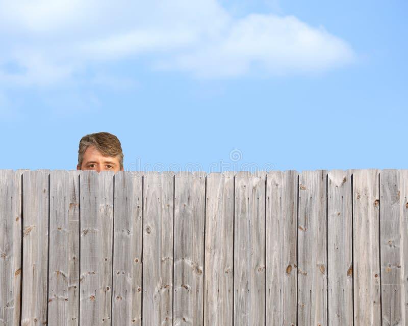 Sbirciare gatto che insegue sopra l'inseguitore di legno del recinto fotografie stock libere da diritti