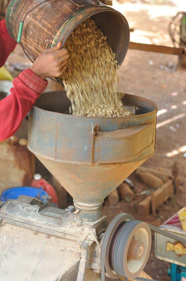Sbucciatrice del caffè. fotografia stock libera da diritti