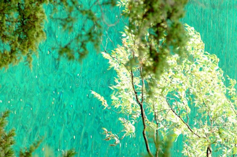Scène 21 van Jiuzhaigou stock afbeeldingen