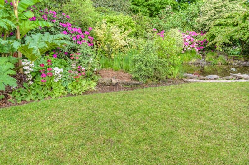 Scène aménagée en parc de jardin avec les arbustes de floraison image stock