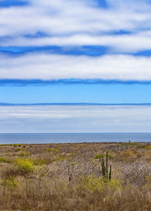 Scène aride de paysage, Galapagos, Equateur photographie stock