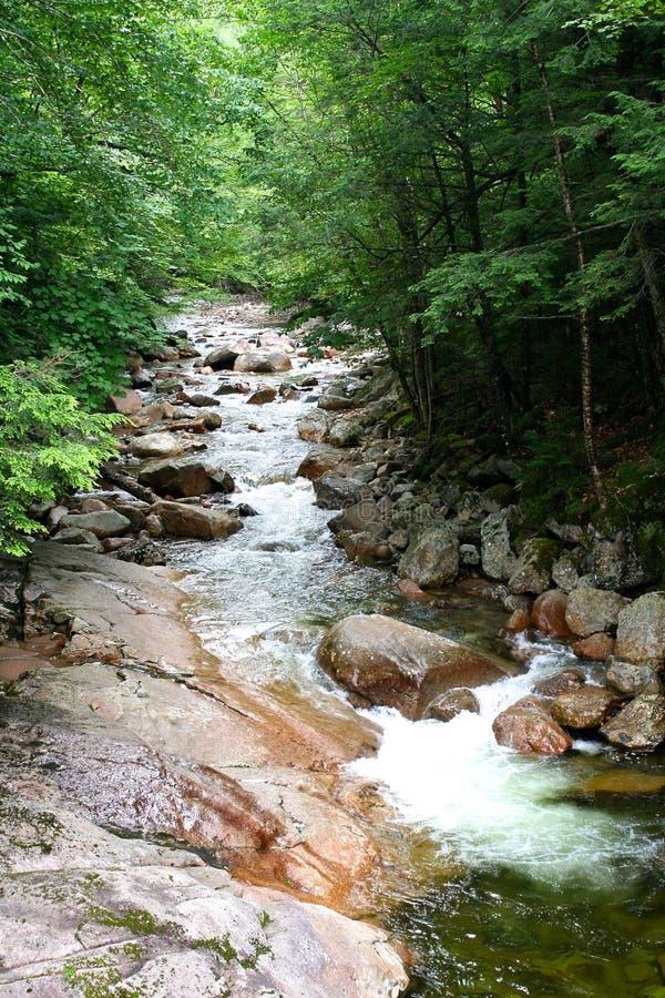 Scène blanche de rivière de montagne photographie stock