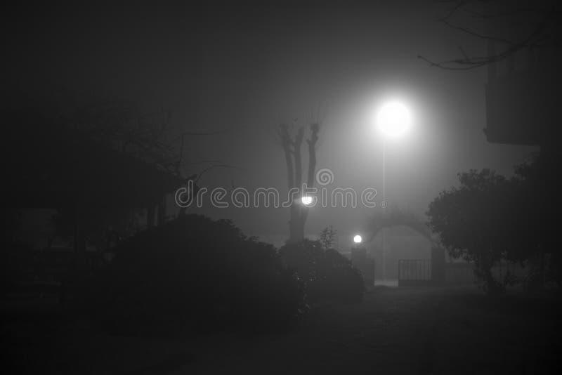 Scène brumeuse de nuit photographie stock libre de droits