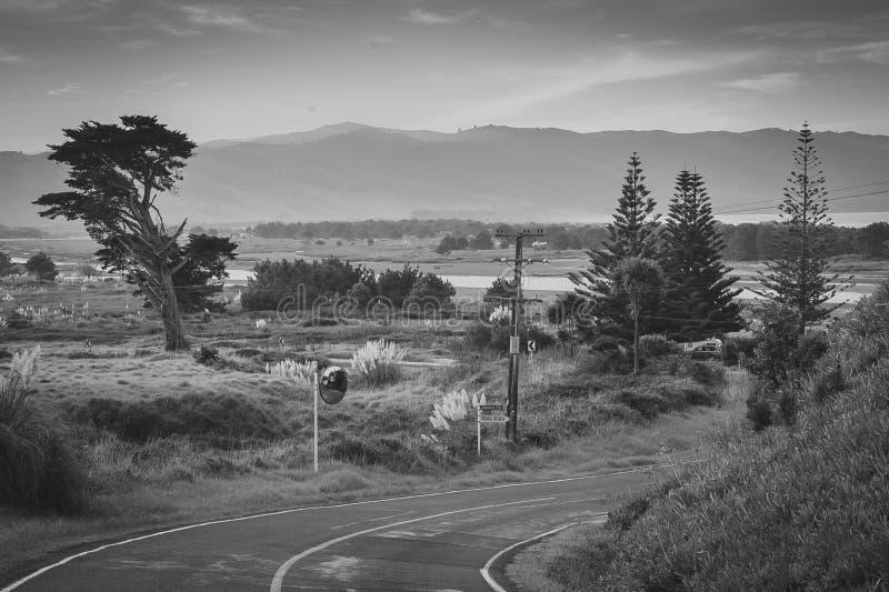 Scène côtière et rurale de paysage avec la route, péninsule de Mahia, Côte Est, île du nord, Nouvelle-Zélande photo libre de droits