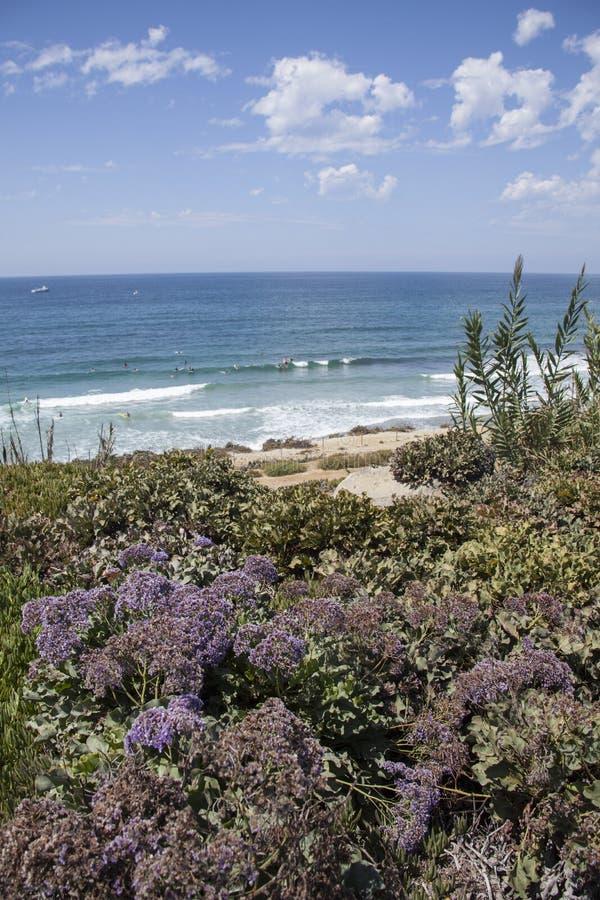 Scène côtière par les falaises et la plage chez Del Mar, San Diego, calorie photographie stock libre de droits