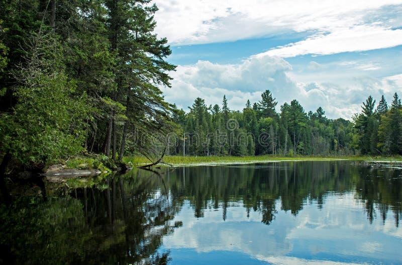 Scène canadienne de région sauvage tout en barbotant le canoë images libres de droits