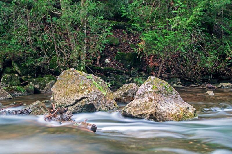 Scène canadienne naturelle sur la rivière de Boyne photos libres de droits