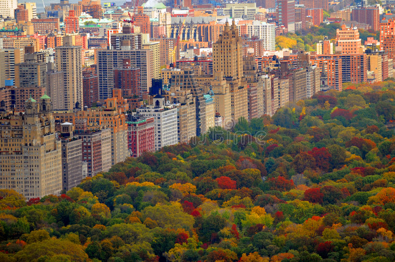 Scène d'automne de Central Park
