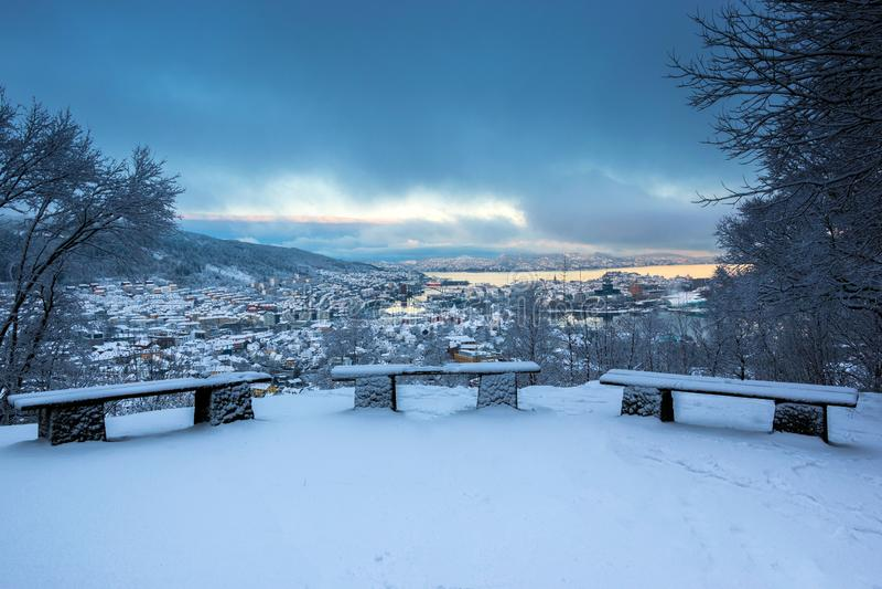 Scène d'hiver avec des bancs de Milou dans une tempête photographie stock libre de droits