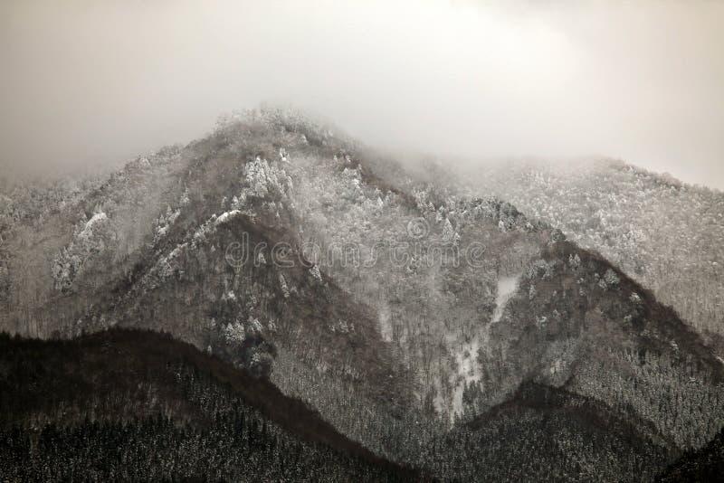 Scène d'hiver dans les alpes japonaises, préfecture de Nagano photos libres de droits