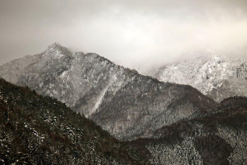 Scène d'hiver dans les alpes japonaises, préfecture de Nagano image stock
