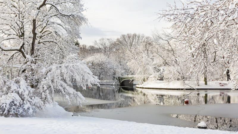 Scène d'hiver de Lullwater photographie stock