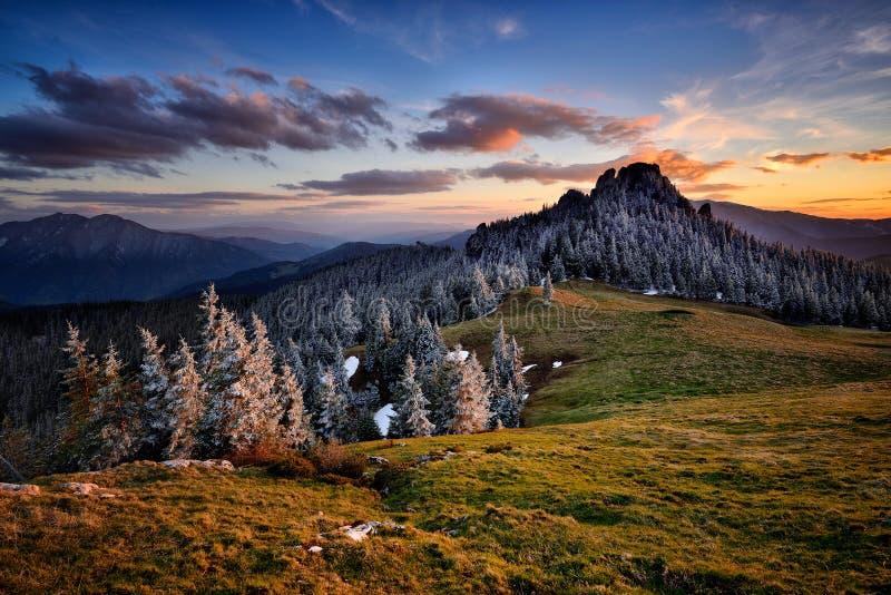 Scène d'hiver en Roumanie, beau paysage des montagnes carpathiennes sauvages photographie stock