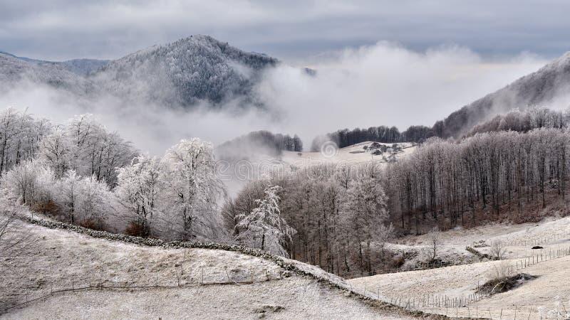 Scène d'hiver en Roumanie, beau paysage des montagnes carpathiennes sauvages photos stock
