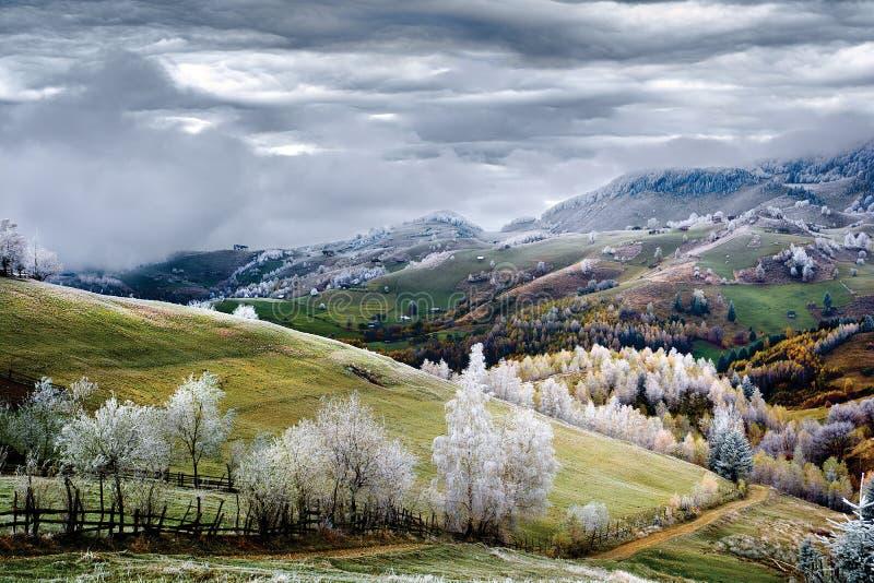Scène d'hiver en Roumanie, gel blanc au-dessus des arbres d'automne photo stock